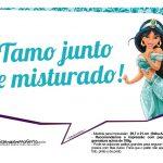 Plaquinhas Divertida Princesa Jasmine 2