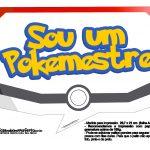 Plaquinhas Pokémon 27