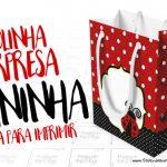 Sacolinha Surpresa Joaninha Grátis para Imprimir