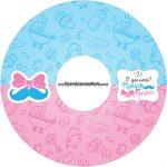 Etiqueta CD DVD Chá de Revelação