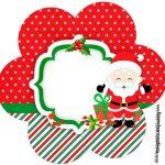 Flor Natal Papai Noel