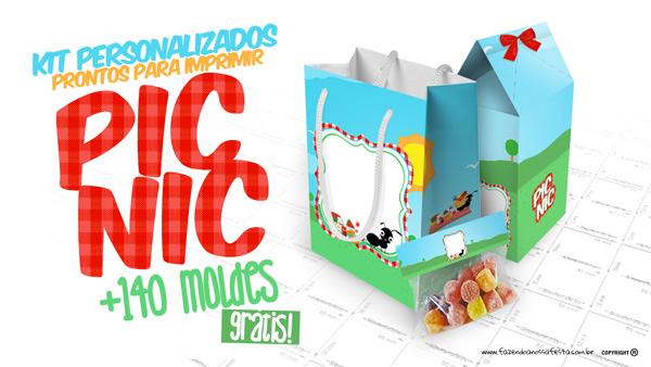 Kit Festa Picnic Grátis