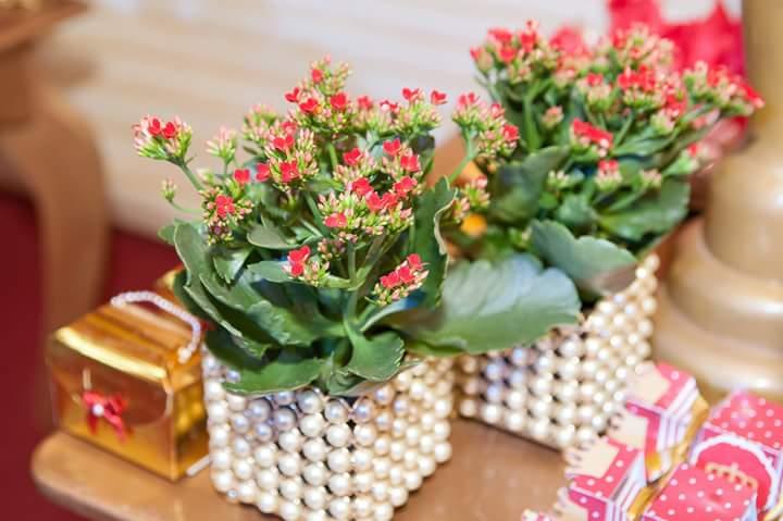 Vaso de Flor Festa Coroa de Princesa da Isabela