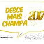 Plaquinhas Divertidas Ano Novo 2017 13