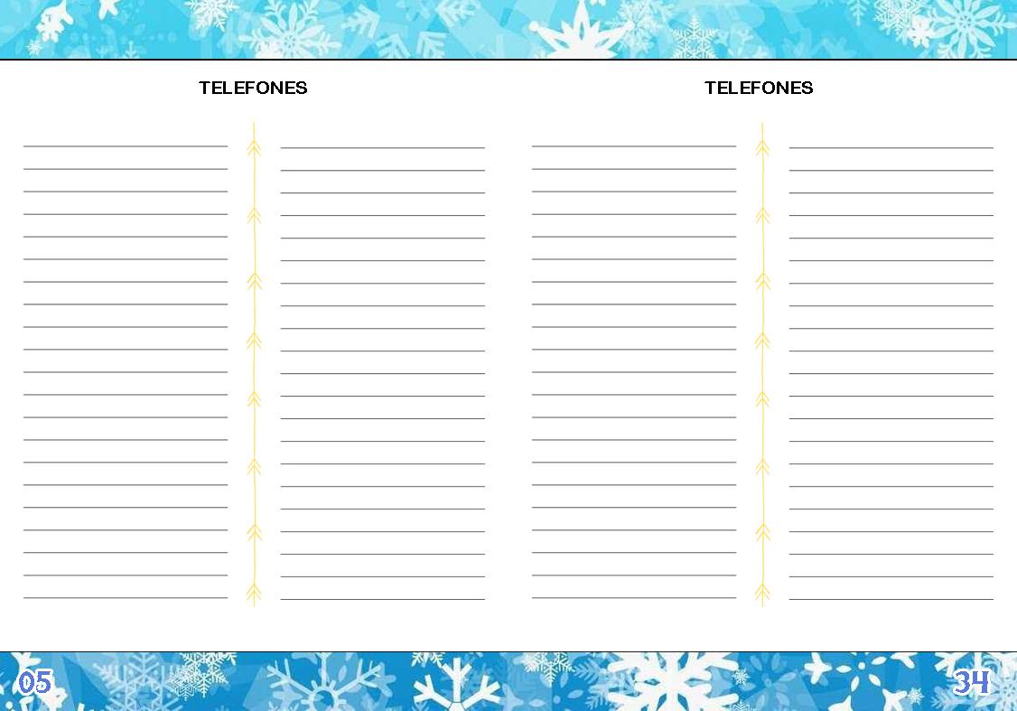 Agenda Personalizada Frozen 2017 55