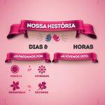 Quadro Dia dos Namorados Nossa História Rosa