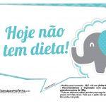 Plaquinhas divertidas Elefantinho Chevron Azul Turquesa 51