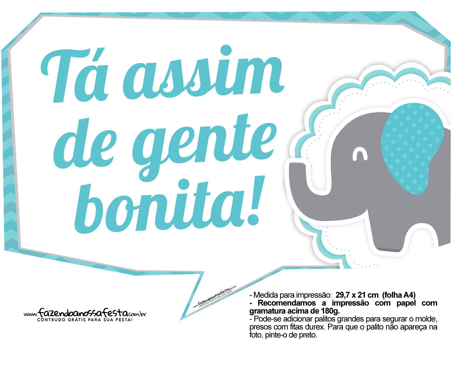 Plaquinhas divertidas Elefantinho Chevron Azul Turquesa 2