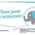 Plaquinhas divertidas Elefantinho Chevron Azul Turquesa 25