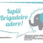 Plaquinhas divertidas Elefantinho Chevron Azul Turquesa 26