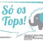 Plaquinhas divertidas Elefantinho Chevron Azul Turquesa 5
