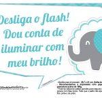 Plaquinhas divertidas Elefantinho Chevron Azul Turquesa 7