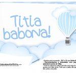 Plaquinha divertida Balão de Ar Quente Azul 17