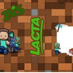 Bis Duplo Minecraft Kit Festa