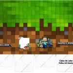 Caixa de leite Minecraft