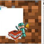 Convite Ingresso Minecraft Kit Festa