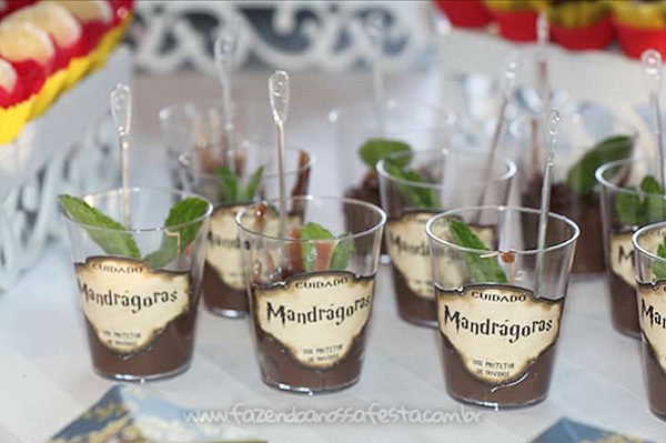 Docinhos Festa Harry Potter da Leticia
