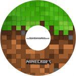 Etiqueta CD DVD Minecraft