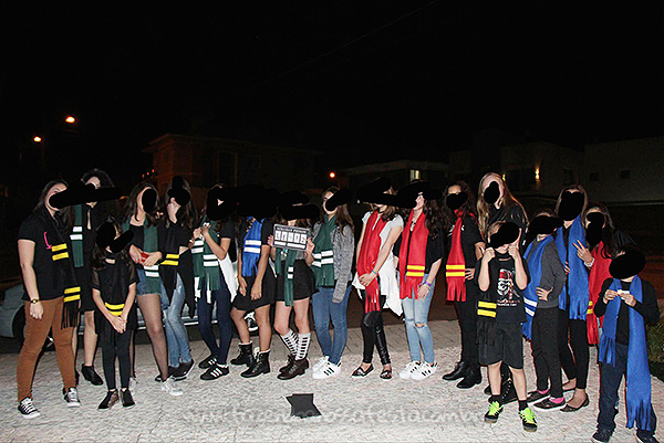 Festa Criativa Harry Potter da Leticia 9