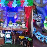 Festa Fazendinha do Igor