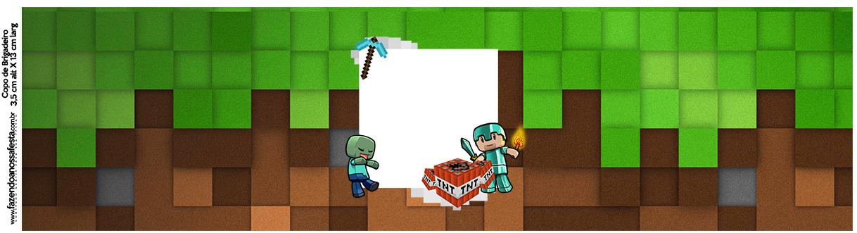 Rotulo Squezze Minecraft