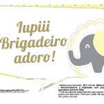 Plaquinhas para Festa Elefantinho Amarelo e Cinza Chevron 8