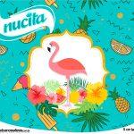 Rotulo Creminho Nucita Tampa Marmitinha 500g Flamingo Tropical Kit Festa