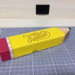 modelo caixa lápis 2