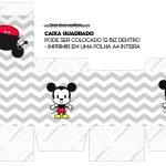 Caixa Cubo ou Bis Mickey Baby Vintage