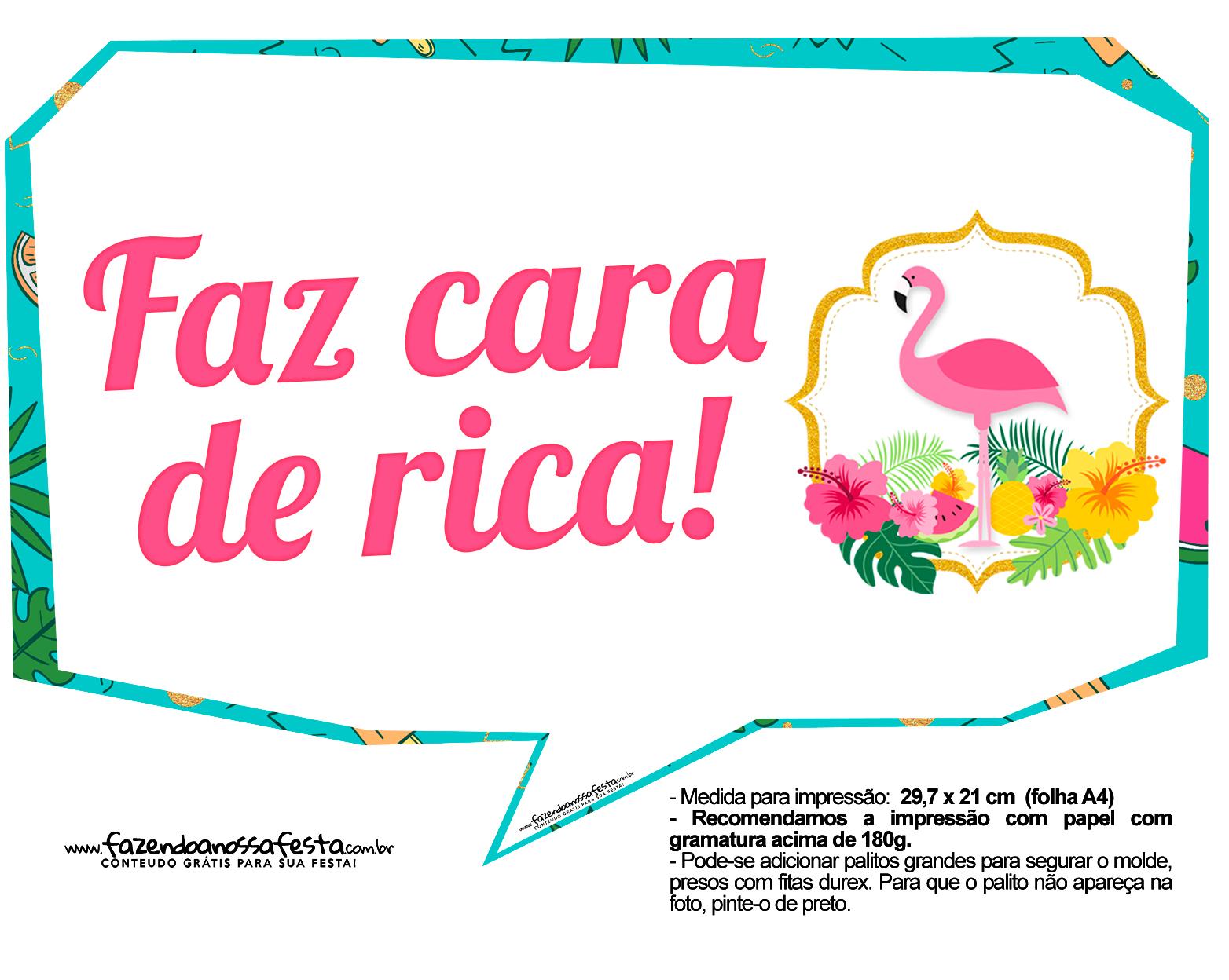 Plaquinhas Flamingo 5