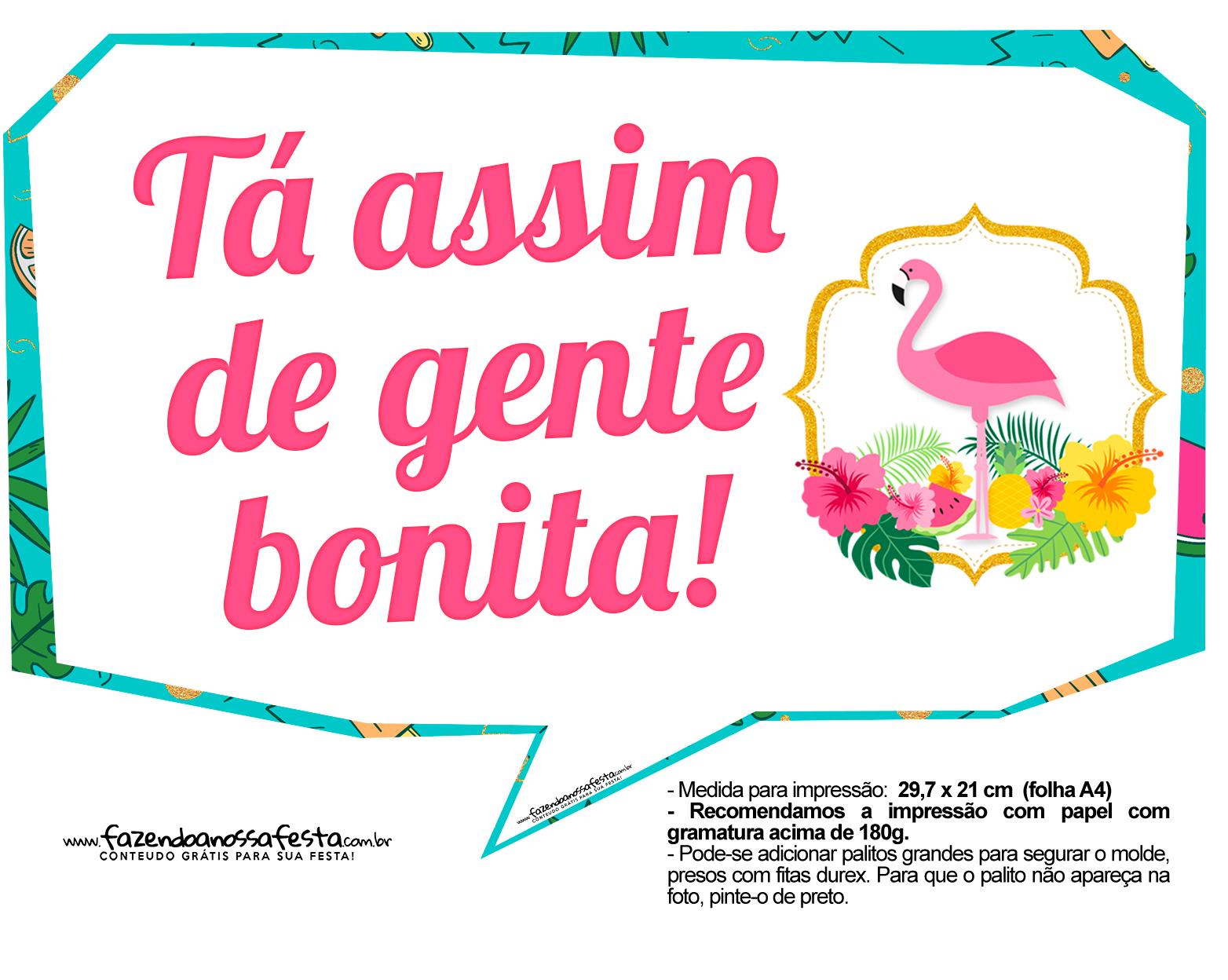 Plaquinhas divertidas Flamingo 8
