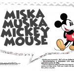 Plaquinhas Mickey Vintage 28