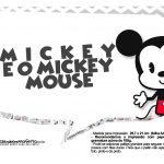 Plaquinhas divertidas Mickey Baby Vintage 20