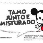 Plaquinhas divertidas Mickey Baby Vintage 24