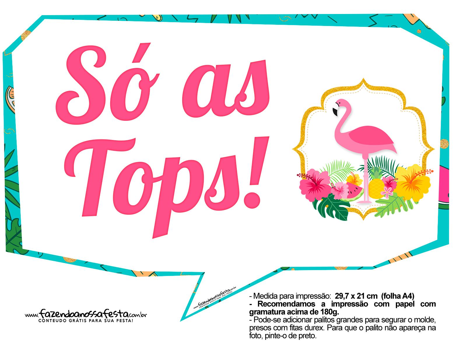 Plaquinhas para Festa Flamingo