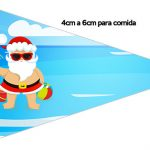 Bandeirinha Sanduiche 1 Natal Tropical