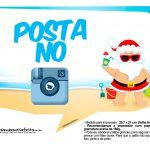 Plaquinhas divertidas Natal Tropical 11