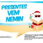 Plaquinhas divertidas Natal Tropical 15