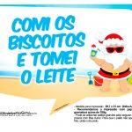 Plaquinhas divertidas Natal Tropical 16