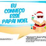 Plaquinhas divertidas Natal Tropical 18