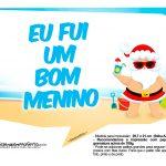 Plaquinhas divertidas Natal Tropical 24