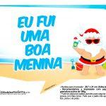 Plaquinhas divertidas Natal Tropical 25