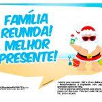 Plaquinhas divertidas Natal Tropical 26