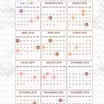 Planner Chuva de Amor Calendario 2018