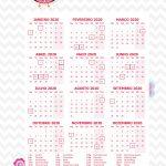 Planner 2020 Corujinha Rosa Calendarios