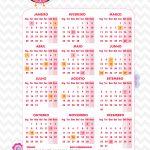Planner Professor Corujinha Rosa Calendario 2019 Corujinha Rosa
