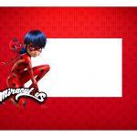 Caixa Mini Confeiteiro Ladybug parte de cima