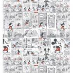 Caixa Ovo de Colher Mickey Vintage_02