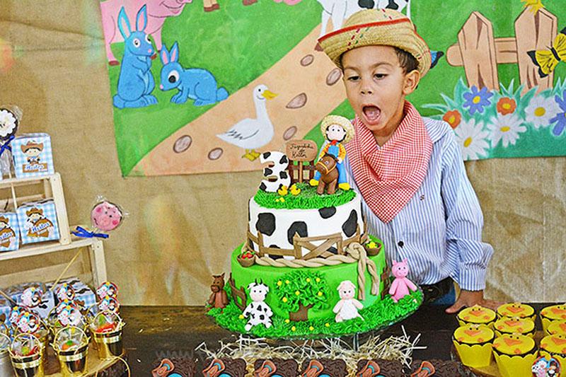 Festa Infantil Fazenda do Heitor Miguel 3