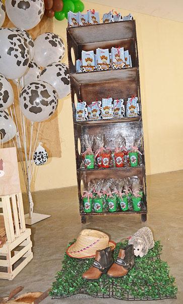 Festa Infantil Fazendinha do Heitor 14